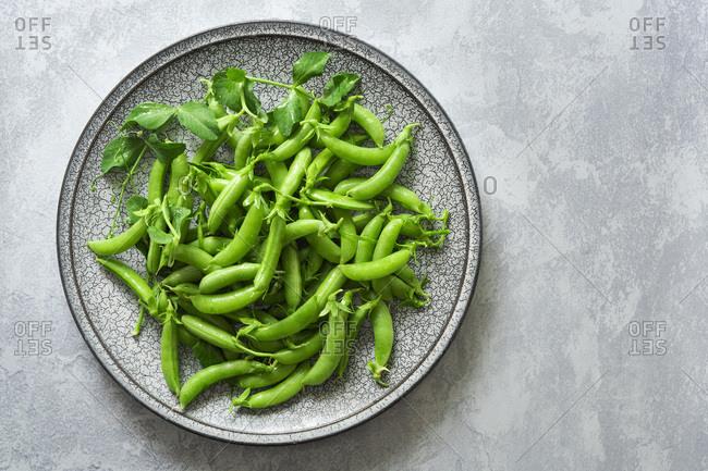 Freshly picked organic sugar snap peas on a plate.