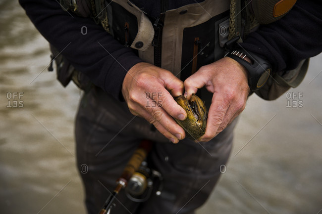 Mid section of fisherman trying to open clam from Grand River, Hamilton, Ontario, Canada