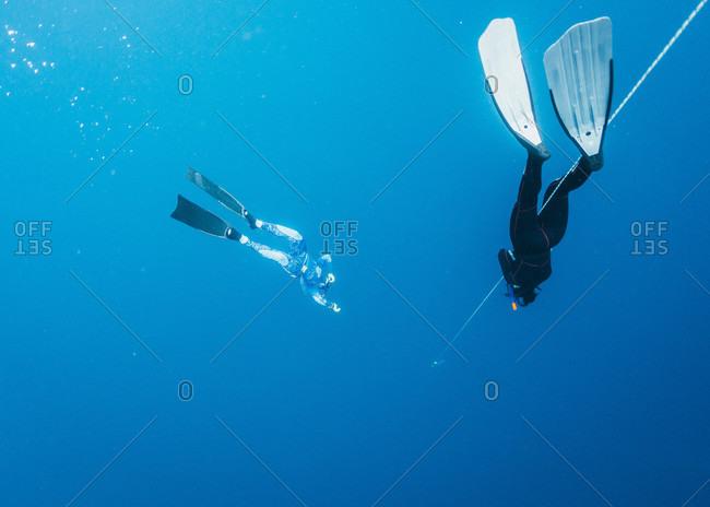Two freedivers underwater, Nusapenida, Bali, Indonesia
