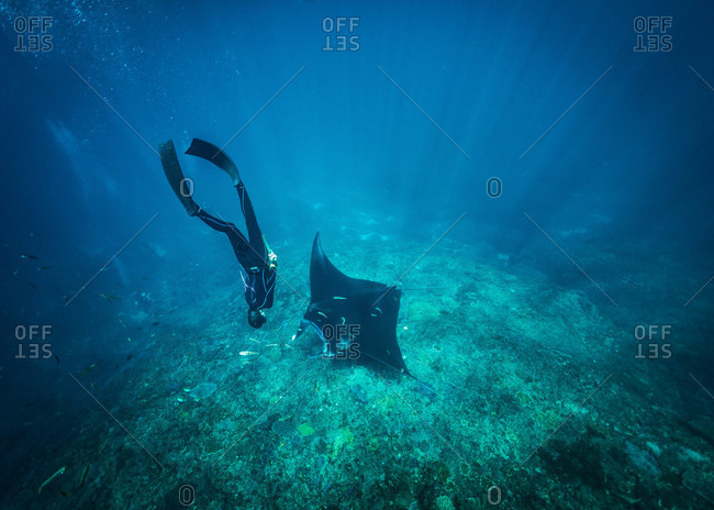 Diving with mantas, Nusapenida, Bali, Indonesia