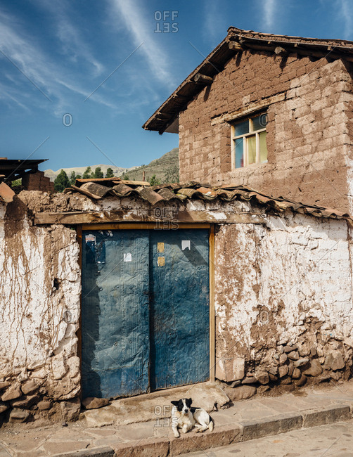 Lake Titicaca, Peru - November 22, 2017: Dog sitting in front of old stone building with blue doors