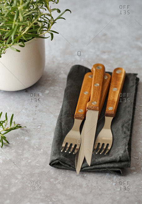 Steak cutlery on table with napkin beside rosemary plant