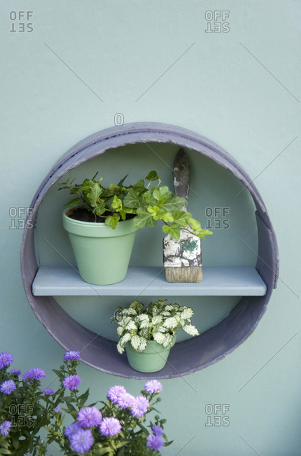 Flower decoration- flour sifter- shelf- brush- flower pots with ivy and aster
