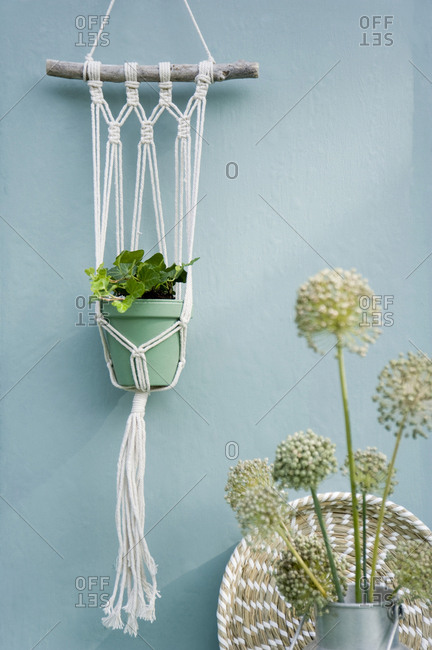 Do it yourself- Makramee attachment- ivy- braided tray- leek blossom