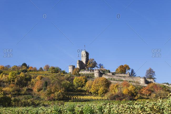 Germany-Rhineland-Palatinate- Pfalz- Wachenheim- Castle- autumn colours- German Wine Route