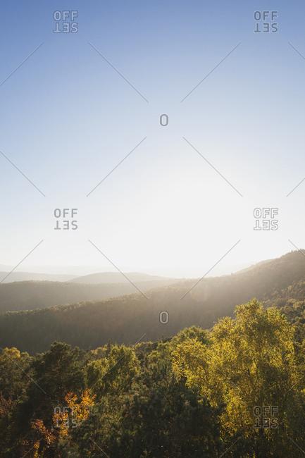 Germany-Rhineland-Palatinate- Pfalz- Palatinate Forest Nature Park in autumn