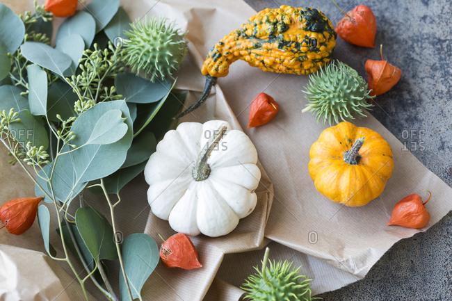 Autumnal decoration- ornamental pumpkins