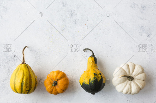 Row of rrnamental pumpkins