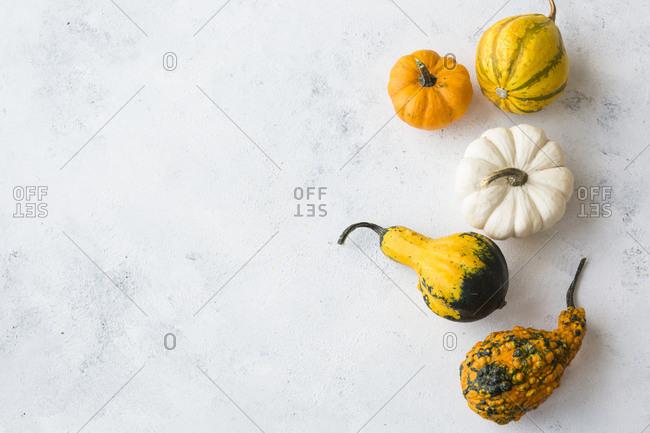 Ornamental pumpkins on white wood