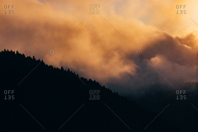 Mountain with trees covered with thick mist at sunset