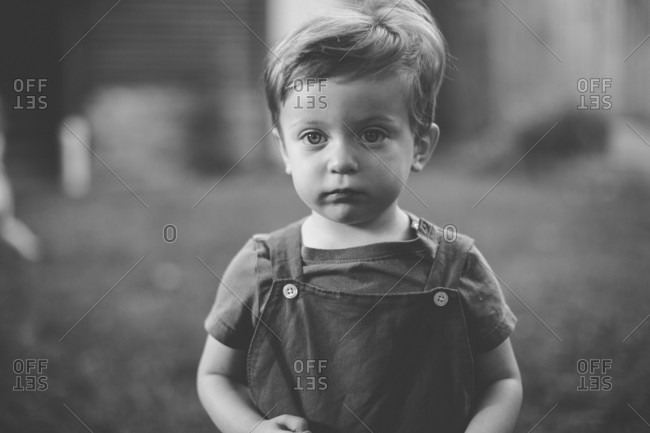 45987733 ... Black and white portrait of a toddler boy wearing overalls