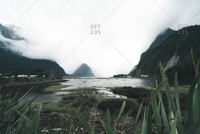 Majestic view of beautiful marsh and mountains on misty day in Fiordland National Park in New Zealand
