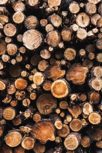 Closeup view of heap of wooden logs of different diameter