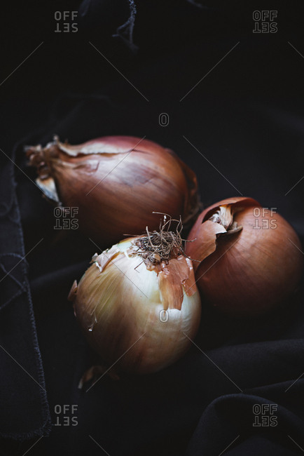 Onions in dark background
