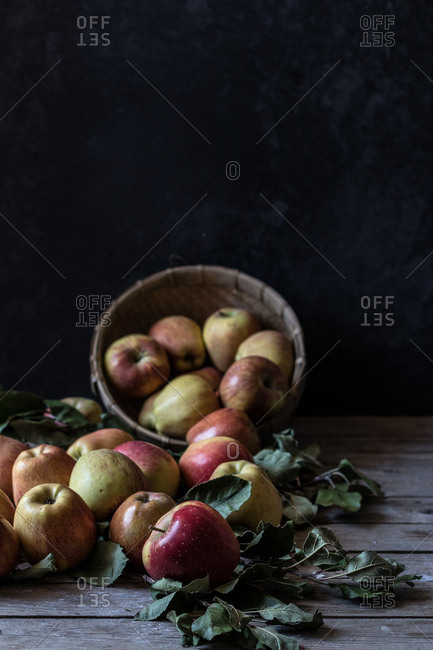 Bunch of fresh apples and dead leaves lying on wooden tabletop near basket on black background