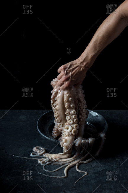 Hand of anonymous person holding tentacles of raw octopus over plate and marble tabletop on black background