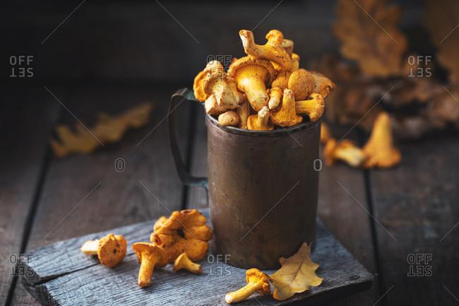 Chanterelle forest mushrooms in vintage bronze mug on old wooden table