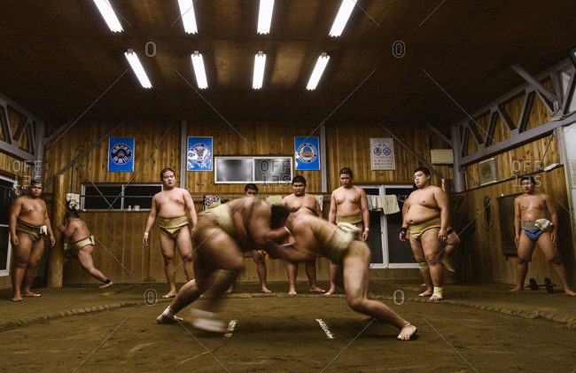 Japan, Niigata - October 25, 2017: Men looking at wrestlers practicing wrestling in sumo beya