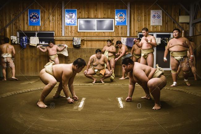 Japan, Niigata - October 25, 2017: Men looking at sumo wrestlers wrestling in beya