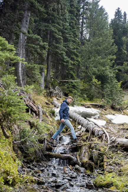 Side view of male hiker walking over river against trees in Olympic National Park