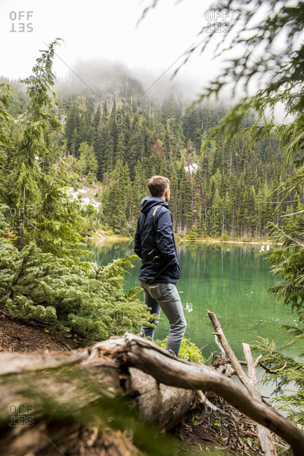 Side view of male hiker standing at lakeshore against trees in Olympic National Park