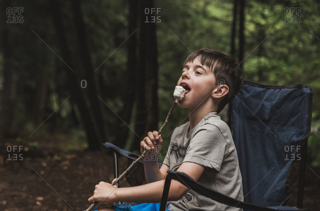 Boy eating marshmallow while sitting on chair against trees in forest