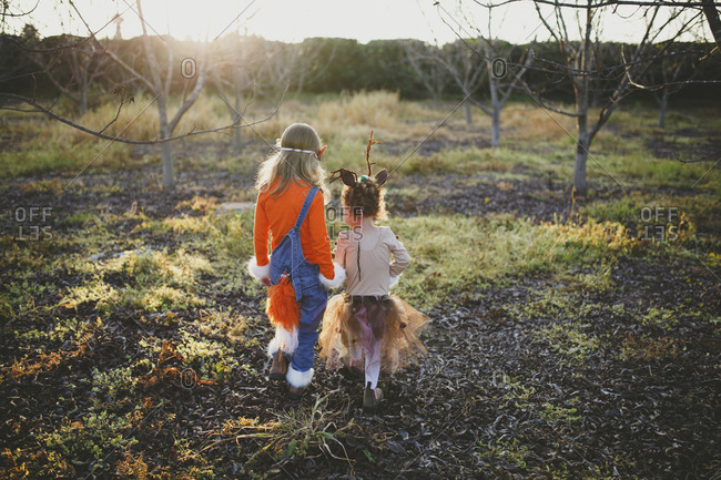 Rear view of sisters in Halloween costumes walking on field at park during sunset