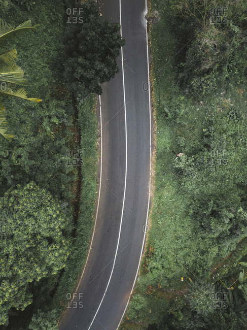 High angle view of road amidst trees in forest at Bali