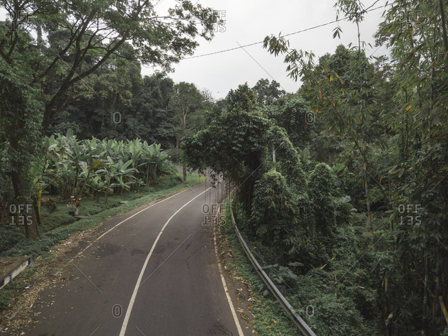 Diminishing perspective of road amidst trees against sky in forest at Bali