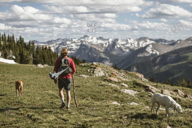 Rear view of male hiker with dogs hiking on mountain against cloudy sky during sunny day