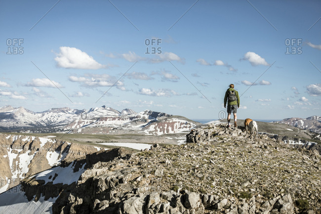 Rear view of male hiker with dogs standing on mountain against blue sky during sunny day