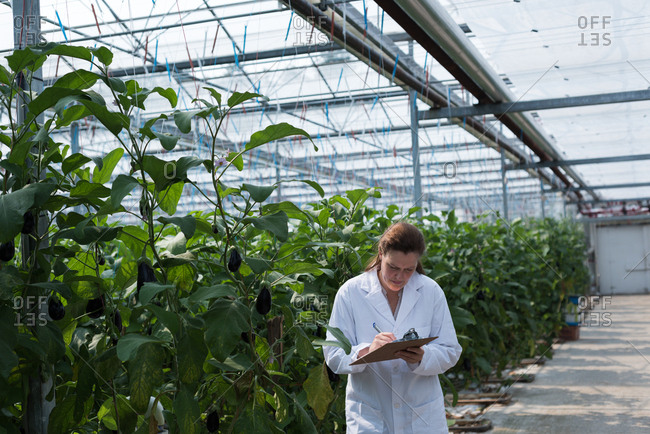 Female scientist writing on clipboard in greenhouse
