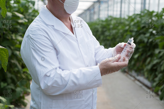 Mid section of scientist holding a syringe in greenhouse