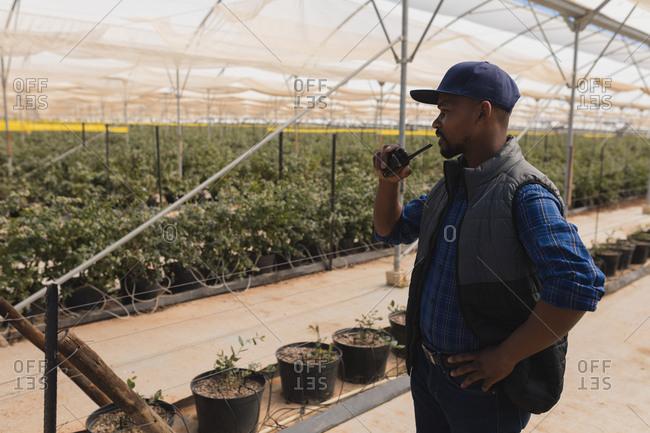Man talking on walkie talkie in blueberry farm