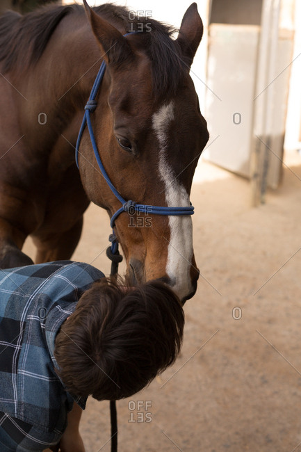 Close-up of woman stroking horse at stable