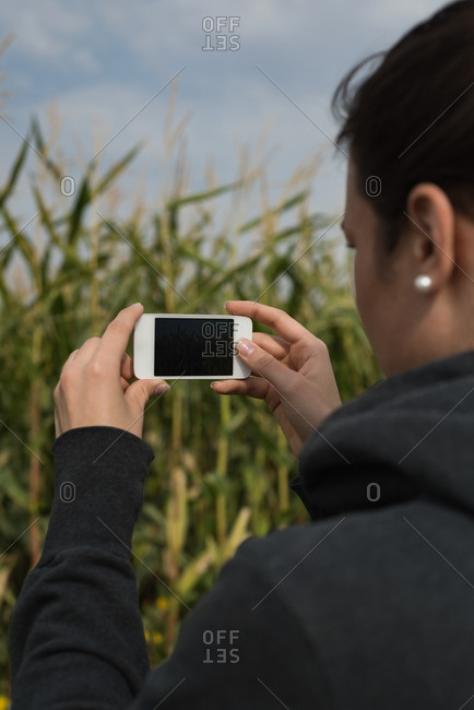 Close-up of woman clicking photos with camera in the field