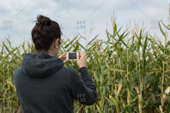 Rear view of woman clicking photos with camera in the field