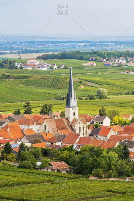 France, Grand Est, Chamery, Vineyards surrounding the town and Saint Pierre et Saint Paul church