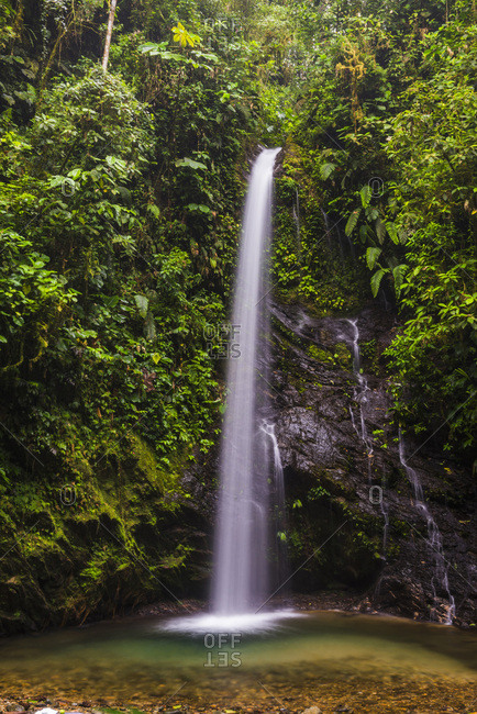 Ecuador, Pichincha, Waterfall San Vincente in Mashpi Cloud Forest, Choco Rainforest