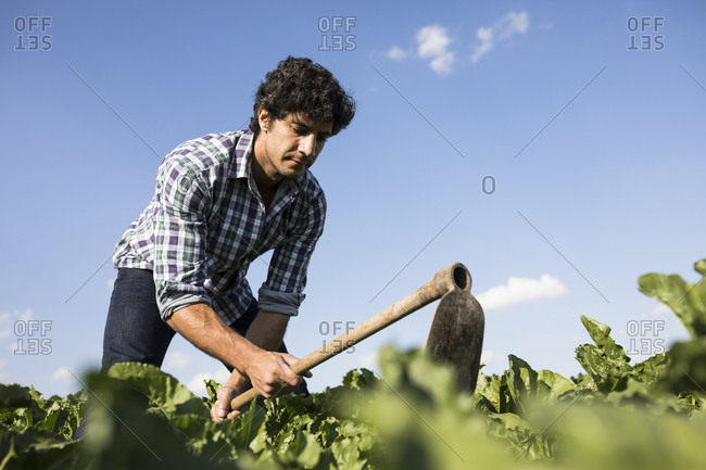 Man in casual outfit working in farm field with hoe on sunny day in Salamanca, Spain