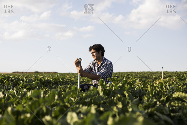 Man in casual outfit examining a sprinkler amidst green plants in beautiful farm field in Salamanca, Spain