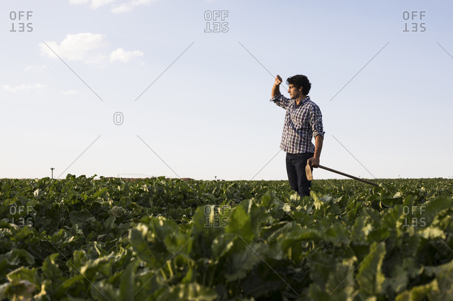 Man in checkered shirt with a hoe looking at the sunset in a farm field in Salamanca, Spain