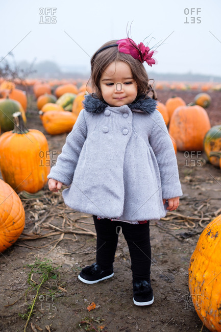 Young girl standing in a pumpkin patch