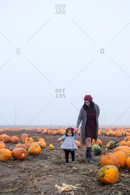Mother and daughter holding hands in a pumpkin patch