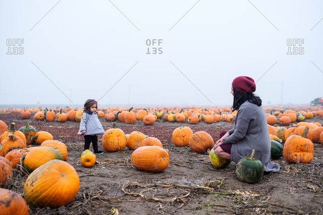 Mother and daughter playing in a pumpkin patch