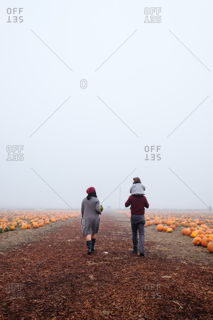 Family walking down a path in a pumpkin patch