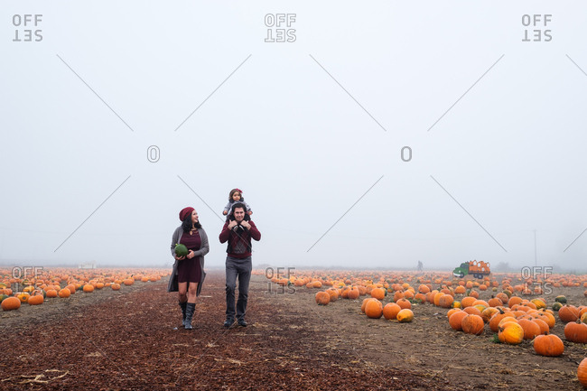 Parents walking along a path in a pumpkin patch