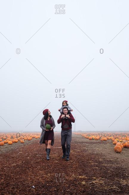 Parents walking alone a path in a pumpkin patch