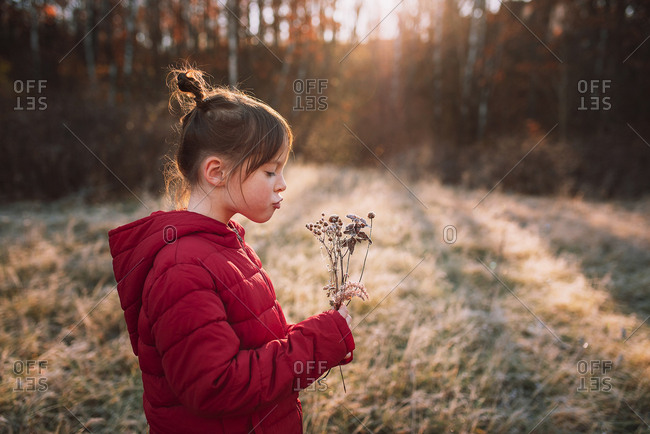 Young girl blowing on dried flowers in a frost covered meadow