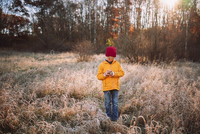 Young boy standing in the forest  in the late fall